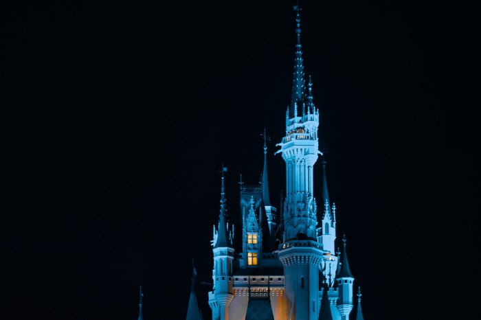 Disney - Magic Kingdom - Photo by Alex Jovel on Unsplash